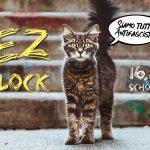 Beatz im Block 2019
